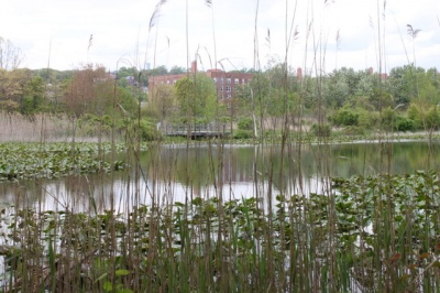 eibs_pond_park_pond_400_01