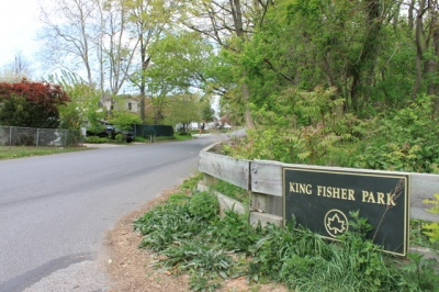 king_fisher_sign_400