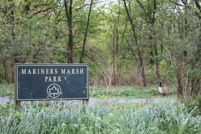 mariners_marsh_400